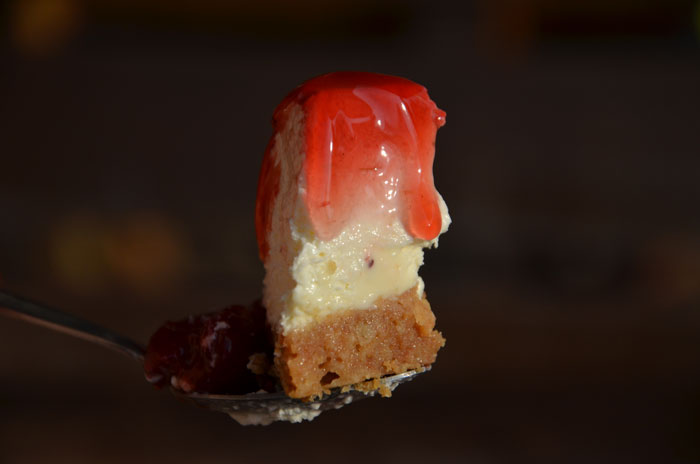 Cheese-cake-piece_0597
